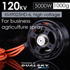 XM9025HD-6, high voltage Motor